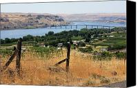 Barbed Wire Fences Photo Canvas Prints - Columbia River - Biggs and Maryhill State Park Canvas Print by Carol Groenen