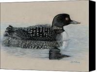 Seattle Drawings Canvas Prints - Common Loon Canvas Print by Cynthia  Lanka