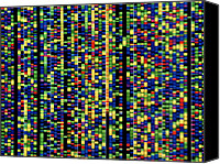 Helix Canvas Prints - Computer Screen Showing A Human Genetic Sequence Canvas Print by David Parker