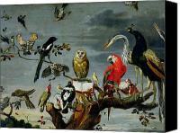 Colourful Canvas Prints - Concert of Birds Canvas Print by Frans Snijders