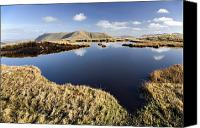 Peak One Canvas Prints - Connemara, Co Galway, Ireland Bog Pool Canvas Print by Gareth McCormack