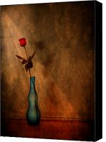Rose Digital Art Canvas Prints - Contemplation Canvas Print by Evelina Kremsdorf