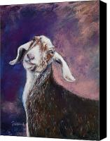 Goat Pastels Canvas Prints - Contented Billy Goat Canvas Print by Joyce A Guariglia