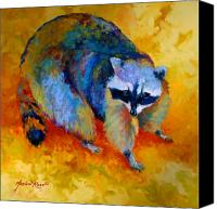 Animal Canvas Prints - Coon Canvas Print by Marion Rose