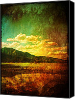 Nevada Canvas Prints - Coppered Reflections Canvas Print by Leah Moore