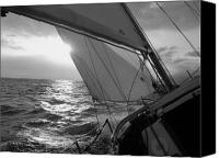 Black And White Yacht Canvas Prints - Coquette Sailing Canvas Print by Dustin K Ryan