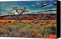 Gnarly Canvas Prints - Coral Dunes Canvas Print by Benjamin Yeager