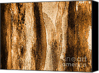 Impression Canvas Prints - Cork Close Up Canvas Print by Marsha Heiken