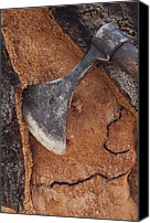 Quercus Canvas Prints - Cork Oak Quercus Suber Bark Canvas Print by Pete Oxford