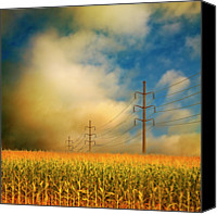 Growth Photo Canvas Prints - Corn Field At Sunrise Canvas Print by Photo by Jim Norris