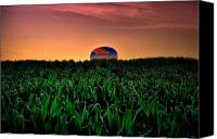 Farm Scenes Canvas Prints - Cornfield Landing Canvas Print by Emily Stauring