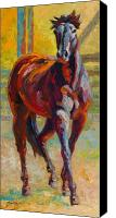 Foal Painting Canvas Prints - Corral Boss - Mustang Canvas Print by Marion Rose