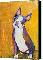 Terrier Canvas Prints - Cosmo Canvas Print by Pat Saunders-White