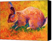 Hare Canvas Prints - Cottontail I Canvas Print by Marion Rose