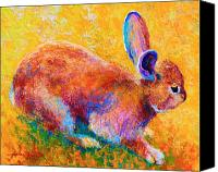 Forest Canvas Prints - Cottontail II Canvas Print by Marion Rose