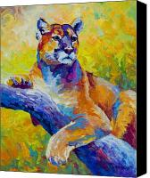 Mountain Lion Canvas Prints - Cougar Portrait I Canvas Print by Marion Rose