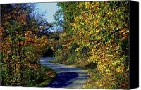 Indiana Autumn Canvas Prints - Country Drive Canvas Print by Gary Wonning