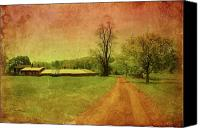Country Dirt Roads Canvas Prints - Country Living - Bayonet Farm Canvas Print by Angie McKenzie