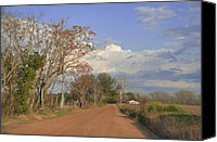 Country Dirt Roads Photo Canvas Prints - Country Road Canvas Print by Jan Amiss Photography