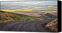 Old Country Roads Canvas Prints - Country Road Canvas Print by Steve McKinzie