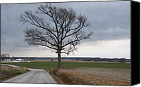 Buy Photos Online Canvas Prints - Country Road Canvas Print by Steven  Michael