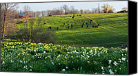 Spring Canvas Prints - Country Spring Canvas Print by Bill  Wakeley