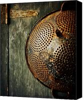 Rusty Door Canvas Prints - Country Vignette Canvas Print by Lisa Russo