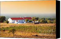 Sunny Vineyard Photo Canvas Prints - Countryside House Canvas Print by Carlos Caetano