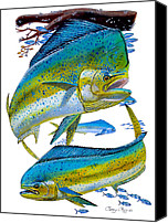 Guy Harvey Canvas Prints - Cow and Bull Canvas Print by Carey Chen