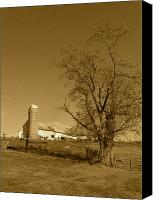 Farming Barns Canvas Prints - Cow Barn Canvas Print by JD Grimes