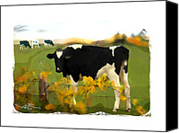 Cow Mixed Media Canvas Prints - Cow Folk Canvas Print by Bob Salo