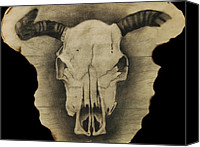 Skull Pastels Canvas Prints - Cow Skull Canvas Print by Tyler Hendrick