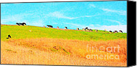 Bulls Canvas Prints - Cows On A Hill . 40D3430 . Painterly . Long Cut Canvas Print by Wingsdomain Art and Photography