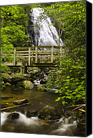 Solitude Canvas Prints - Crabtree Falls and Bridge Canvas Print by Andrew Soundarajan
