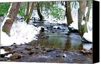Rushing Mountain Stream Canvas Prints - Craig Run Canvas Print by Thomas R Fletcher