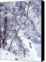 Mountain Stream Canvas Prints - Cranberry River Deep Snow Canvas Print by Thomas R Fletcher