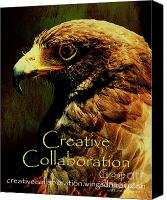 Collaboration Canvas Prints - Creative Collaboration Group . Hawk Canvas Print by Wingsdomain Art and Photography