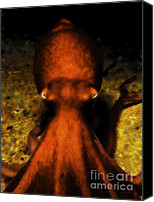 Coral Reef Art Canvas Prints - Creatures of The Deep - The Octopus - v4 - Orange Canvas Print by Wingsdomain Art and Photography
