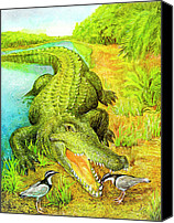 Natalie Berman Canvas Prints - Crocodile Canvas Print by Natalie Berman