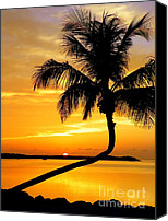 Tropical Sunset Canvas Prints - Crooked Palm Canvas Print by Karen Wiles