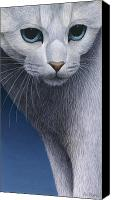 Carol Canvas Prints - Cropped Cat 5 Canvas Print by Carol Wilson