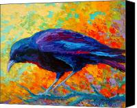 Ravens Canvas Prints - Crow III Canvas Print by Marion Rose
