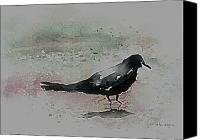 Black Crow Canvas Prints - Crow In A Puddle Canvas Print by Arline Wagner