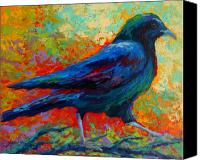 Ravens Canvas Prints - Crow Solo I Canvas Print by Marion Rose