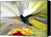 Souvenir Canvas Prints - Cuenca Hummingbird Series 1 Canvas Print by Al Bourassa