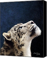 Soulful Canvas Prints - Curiosity Canvas Print by Bill Fleming