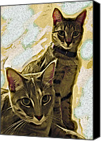 Animals Digital Art Canvas Prints - Curious Cats Canvas Print by David G Paul