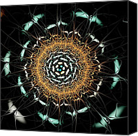 Insects Mixed Media Canvas Prints - Curious Moth Canvas Print by Anastasiya Malakhova