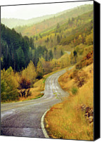 Lush Foliage Canvas Prints - Curve Mountain Road With Autumn Trees Canvas Print by Utah-based Photographer Ryan Houston