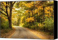 Autumn Leaves Canvas Prints - Curves Ahead Canvas Print by Scott Norris